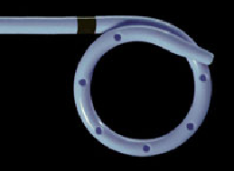 File:Endo Sof.png