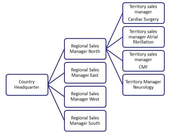 File:Sales Force Structure-Heart Valves.png - DolceraWiki